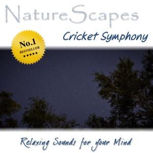 Cricket Symphony by Sounds by Knight