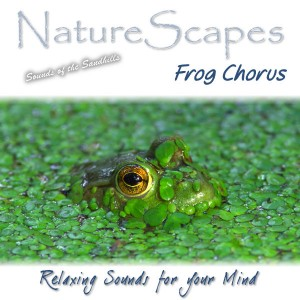 Frog Chorus by Sounds by Knight